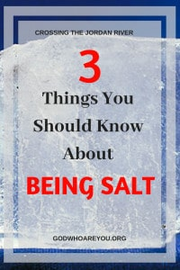3 Things You Should Know About Being Salt