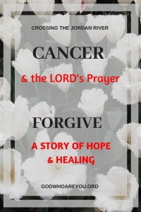 Small white flowers with text overlay: Cancer and the Lord's Prayer Forgive, a story of hope and healing