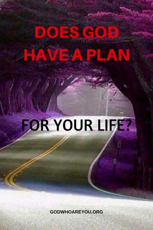 DOES GOD HAVE A PLAN FOR YOUR LIFE - GUIDANCE