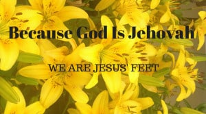 Yellow lillies with text Because God is Jehovah we are Jesus feet