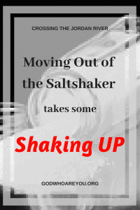 Moving Out of the Saltshaker takes some shaking up