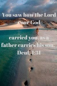 Shepherd carries his son