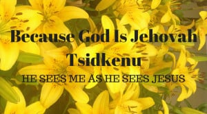 Yellow lilies with text Because God is Jehovah Tsidkenu He sees Jesus blood